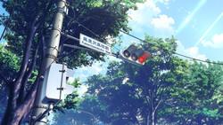 KoiAme06_0036.jpg